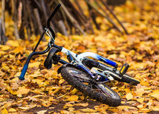 Bicycle in the middle of the park Royalty Free Stock Photos