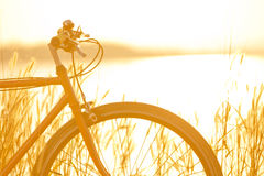 Bicycle in morning light Stock Photos