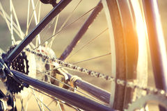 Bicycle in morning, Stock Photos