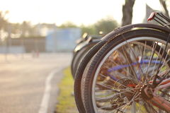 Bicycle in morning. Stock Image