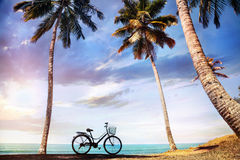 Bicycle near the ocean Stock Images