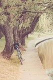 Bicycle near river in park/bicycle near river in park, toned stock photography