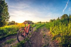 Bicycle near the road in the field at sunset royalty free stock photography
