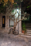 Bicycle near tree on the city street Royalty Free Stock Image