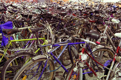 Bicycle park. A mass of bicycles royalty free stock photography