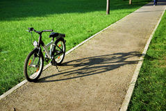 Bicycle in a park Royalty Free Stock Photo