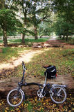 Bicycle in the park Stock Photos