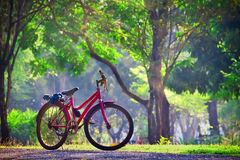 Bicycle in a Park Stock Photography