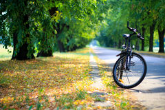 Bicycle in the park Royalty Free Stock Photos
