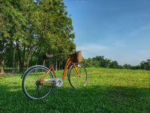 Bicycle in park Stock Images