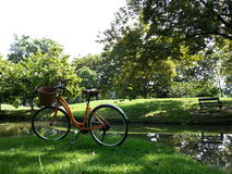Bicycle in park Stock Image