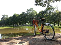 Bicycle in park Royalty Free Stock Image