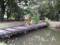 Bicycle in park Royalty Free Stock Photos