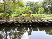 Bicycle in park Royalty Free Stock Images