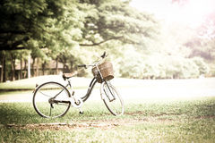 Bicycle in the park. With retro or vintage color tone Stock Photo