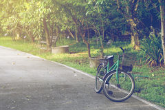 Bicycle in the park Royalty Free Stock Photography