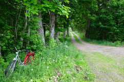 Bicycle parked in nature. At a green dirt road Stock Photos