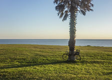 Bicycle parked in a Park at the Coast in Montevideo Stock Image