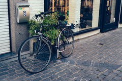 Bicycle parked in a shop in Mechelen Stock Photos