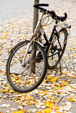 Bicycle parked on street Stock Photography