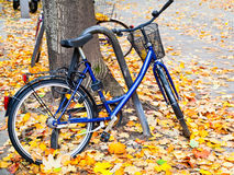 Bicycle parked on street with fallen leaves Royalty Free Stock Photo