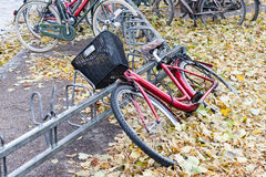 The bicycle parked at a tree in autumn day Royalty Free Stock Photos