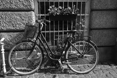 BICYCLE PARKED WITH WINDOW WITH FLOWERS Royalty Free Stock Image