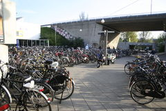 Free Bicycle Parking Royalty Free Stock Photo - 5466465