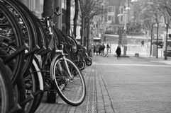 Bicycle parking in Amsterdam Royalty Free Stock Image