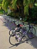 Bicycle parking bay Stock Image