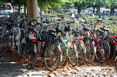 Bicycle parking in Bruges Royalty Free Stock Photography