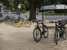 Bicycle Parking in the Middle of a Park royalty free stock photos