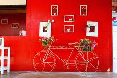 Bicycle parking front of red wall. Thailand Stock Image