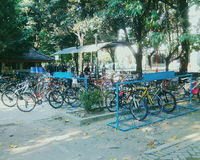 Bicycle parking. Morning view in bicycle Parking area Royalty Free Stock Images