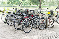 Bicycle parking. Outdoor Royalty Free Stock Photography