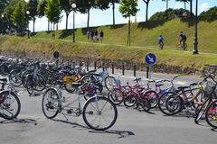 Bicycle parking in a park in the city. With trees background Stock Images