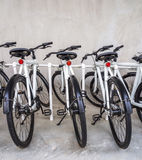 Bicycle in parking Royalty Free Stock Photos