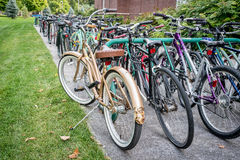 Bicycle parking at university campus Stock Photos