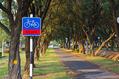 Bicycle path. In the park royalty free stock image