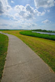 Bicycle path. In the Dutch river landscape Royalty Free Stock Image