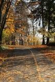 Bicycle path Stock Photo