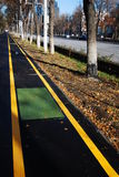 Bicycle path. Along side of road. Bike lane Stock Image