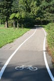 Bicycle path. Bike path in the summer Park Stock Image