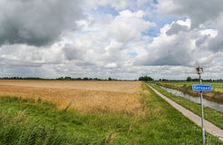 Bicycle path through dutch landscape Stock Image