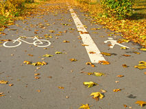 Bicycle path and footpath. Tarred bicycle path and footpath in autumn Royalty Free Stock Photography