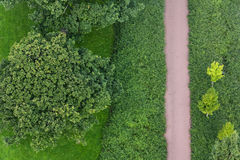 Bicycle path in green stock image