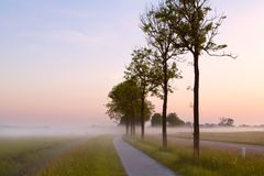 Bicycle path in misty morning Royalty Free Stock Photography