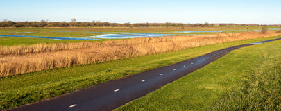 Bicycle path next to Dutch wetlands in autumn Stock Image