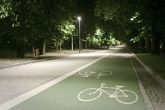 Bicycle path in the park. Bicycle path shot in the city park at night Royalty Free Stock Photos