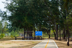 Bicycle path in parks stock photography
